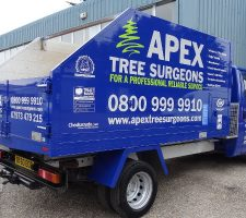 Apex-tree-surgeons (2)