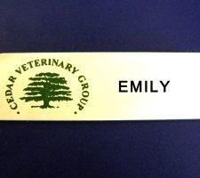 cedar-veterinary-group